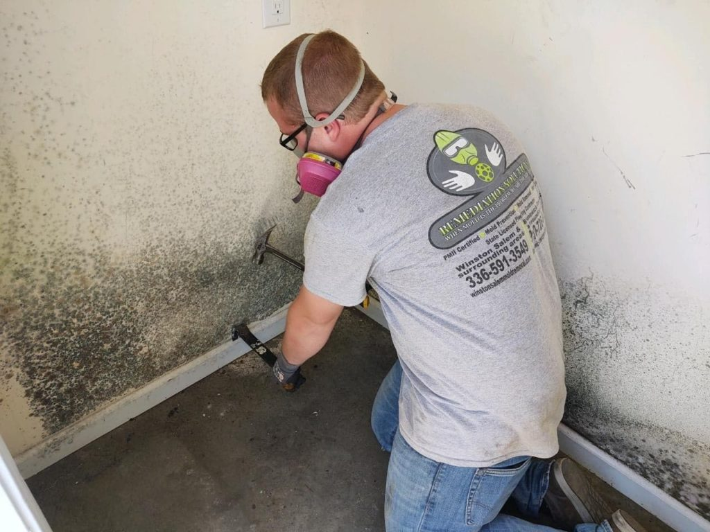 Certified Mold Removal Company Near me