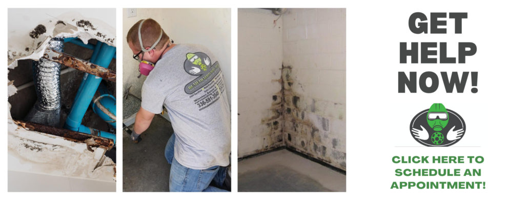 mold remediation services north carolina